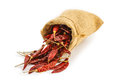 Dried chili in a sac Royalty Free Stock Photo