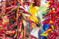 Dried chilly detail of red bunch Royalty Free Stock Photography