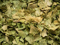 Dried cilantro flakes closeup ingredients Royalty Free Stock Images
