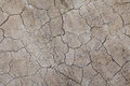Dried crack land and background Royalty Free Stock Image