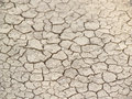 Dried and cracked earth texture Stock Photo