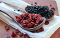 Dried cranberries & blueberries Stock Images