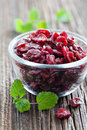 Dried cranberries in a bowl Stock Photography