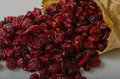 Dried cranberry Royalty Free Stock Photo