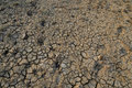 Dried earth with cracks and footsteps Royalty Free Stock Image