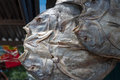 Dried fish, Sulawesi, Indonesia Stock Photography