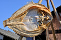 Dried fish sun is the traditional food in sichuan china Stock Image