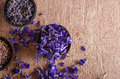 Dried flower petals scented lavender heather and larkspur copy space Royalty Free Stock Images