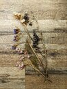 Dried flowers bouquet on wooden table