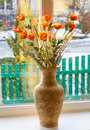 Dried flowers in vase on a window against winter background Royalty Free Stock Photography