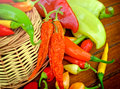 Dried and fresh peppers multicolored Stock Photography