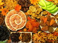 Dried fruits different can use as background Royalty Free Stock Photos