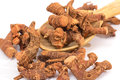 Dried galangal root Royalty Free Stock Photo