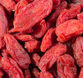 Dried goji berries lycium barbarum Royalty Free Stock Photography