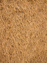 Dried Grass Lawn Background Stock Photography