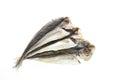 Dried Horse mackerel Royalty Free Stock Photo