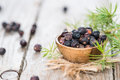 Dried Juniper Berries Royalty Free Stock Photo