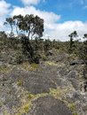 Dried Lava and New Vegetation Growth on a Partly Cloudy Day Royalty Free Stock Photo