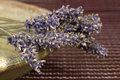 Dried lavender bunch Stock Images