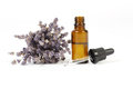 Dried lavender and essential oil in little bottle on white background Royalty Free Stock Images