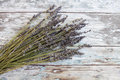 Dried lavender Royalty Free Stock Photo