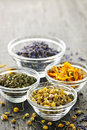 Dried medicinal herbs Stock Image