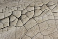 Dried Mud Background