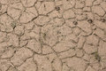 Dried mud near the river Royalty Free Stock Photo