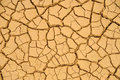 Dried mud texture Royalty Free Stock Photo