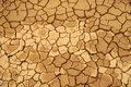 Dried mud texture Stock Image