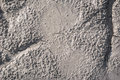 Dried mud texture with cracks Royalty Free Stock Photo