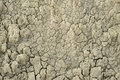 Dried mud texture one Royalty Free Stock Photo