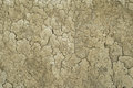 Dried mud texture two Royalty Free Stock Photo