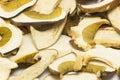 Dried mushrooms Boletus reticulatus, detail. Royalty Free Stock Photo