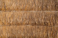Dried palm leaf wall texture Royalty Free Stock Photo