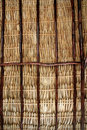 Dried palm tree leaves palapa roof and beams Royalty Free Stock Image