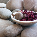 Dried petals plants cup zen stone background Royalty Free Stock Image