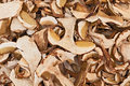 Dried porcini mushrooms slices of edible boletus edulis on display in the italian market Stock Image