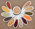 Dried pulses selection in white porcelain dishes over hessian background Stock Image