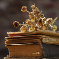 Dried rose bouquet on a pile of books Royalty Free Stock Photo