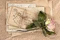 Dried rose flower and old letters. scrapbook Royalty Free Stock Photo