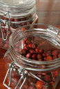 Dried rose hips Royalty Free Stock Photo