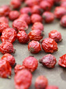 Dried rose hips on table selective focus some berries in focus a stone are not Royalty Free Stock Image