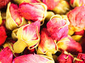 Dried rosebuds Stock Image