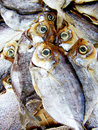 Dried salted fish Royalty Free Stock Photography