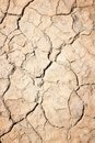 Dried soil surface Royalty Free Stock Photo