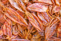Dried squid. Stock Photography