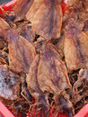 Dried squid Royalty Free Stock Photo