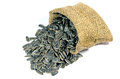 Dried sunflower seeds. Royalty Free Stock Photo