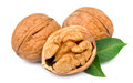 Dried walnuts with leaves Royalty Free Stock Image
